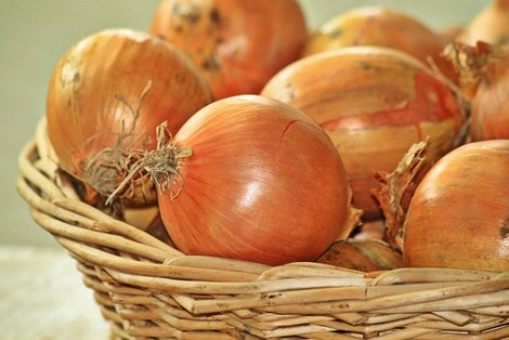 onions-1228362__340