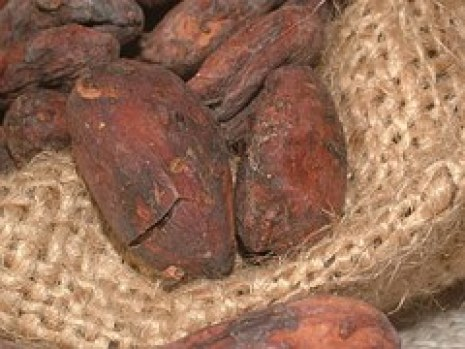 cacao-beans-91083__180