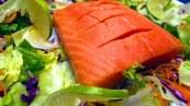 salmon-395793__180