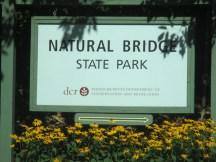 should be Marble Bridge Park