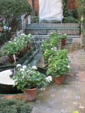 Sorolla's garden