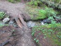 2-log bridge