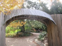 stick arch and fence