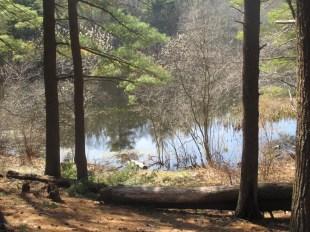 St. Moritz Pond