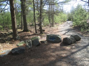 rocks on the trail