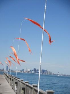 dock flags scare birds