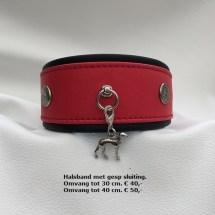 Halsband 206G met gesp