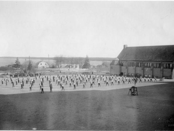 En stor grupp människor utför gymnastik utomhus.