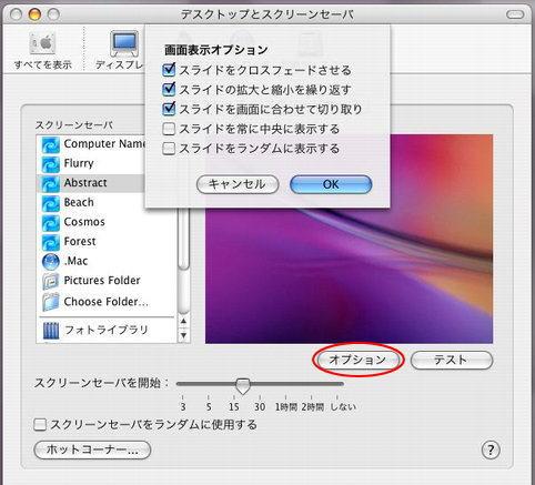 スクリーンセーバ-画面表示オプション
