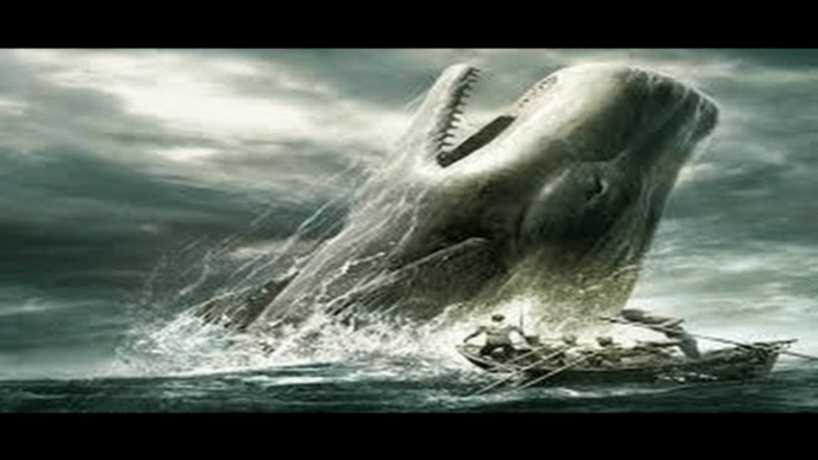 Essays on moby dick