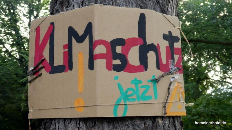 Ankündigung Fridays for Future Demo am 25.09.2020 in Hameln