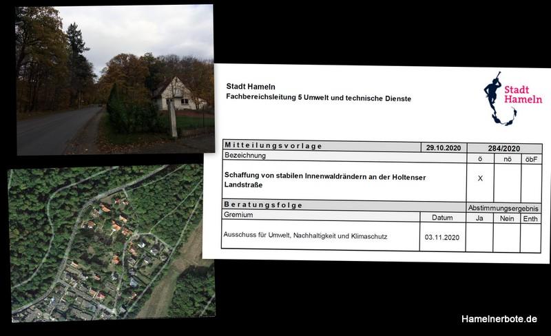 Kurzbericht Umweltausschuss Hameln – Baumfällungen Holtenser Landstraße. 3.11.2020