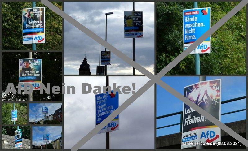 Der AfD Plakatwahlkampf in Hameln hat begonnen.
