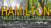 Hamilton Needs Its Trees