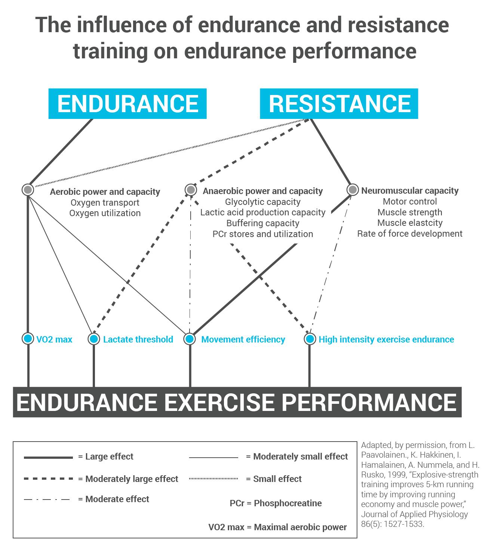 Endurance Training: The Strength Behind Endurance Running