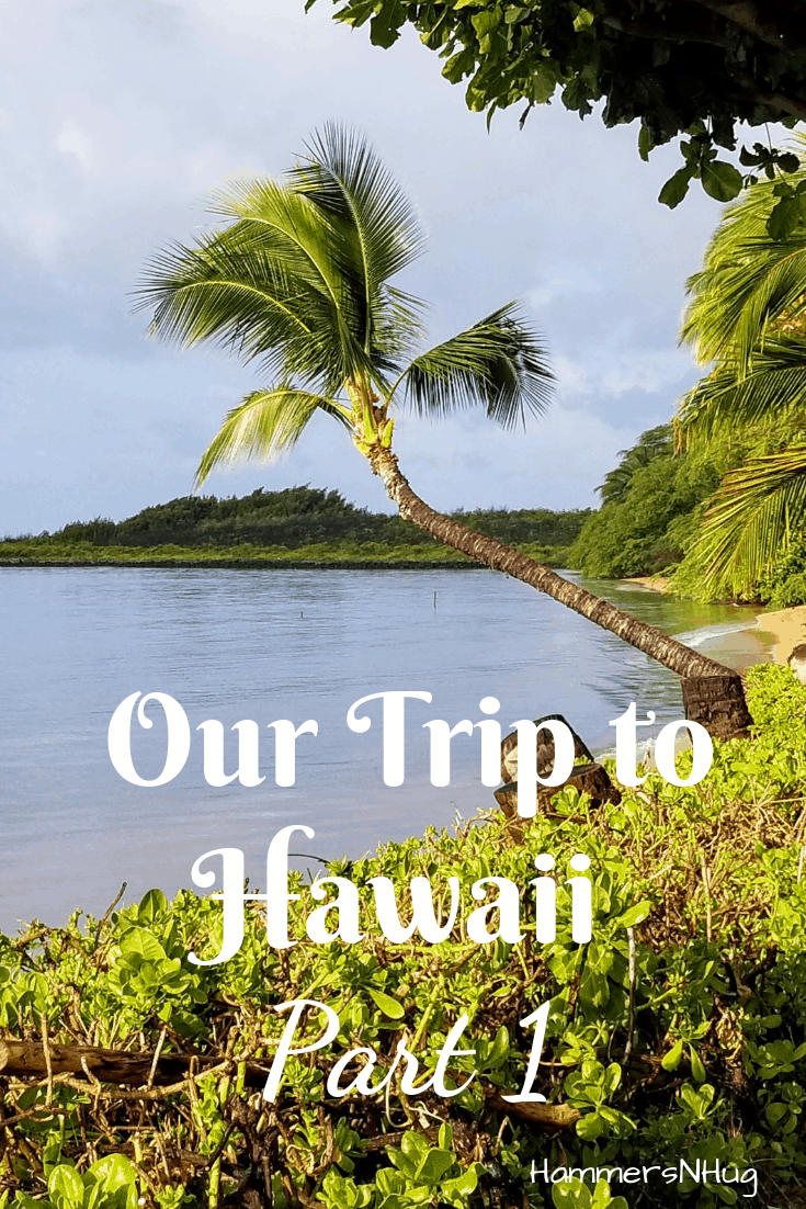 Our Hawaii Trip Part 1