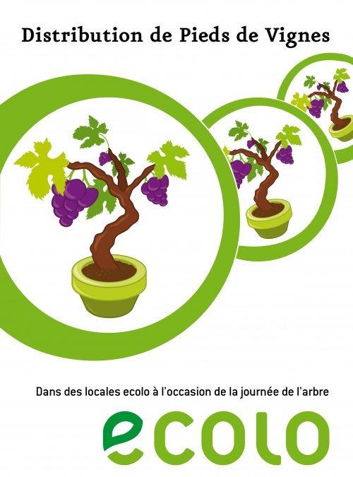 Distribution de pieds de vignes – 27 novembre 2010