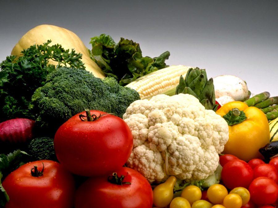 Pengenalan Serta Penjelasan Lengkap Terkait Pertanian Organik dari Cara Awal Hingga Pemasaran Hasil Panen. Simak Selengkapnya !