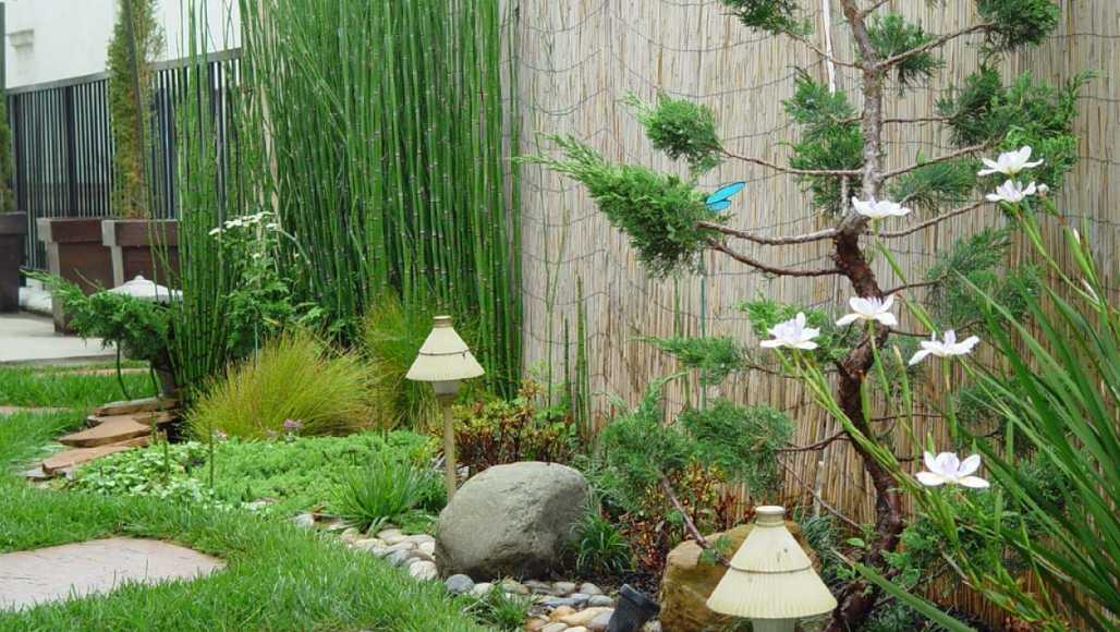 430 Koleksi Desain Taman Belakang Kecil Terbaru