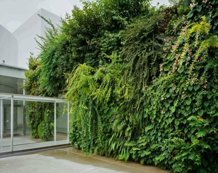 contoh taman minimalis