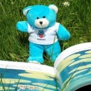 Bookstart Bear reading a picture book