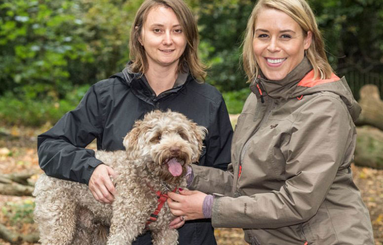An introduction to Hampstead Housesitters