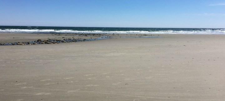 North beach at Hampton beach rental