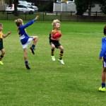 hampton rovers juniors under 8 blue