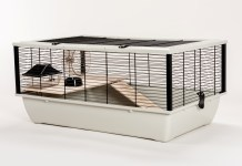 Cage & Habitat of Hamsters