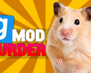 Gmod Murder - Hammy The Hamster - Funny Moments w/ The Group - gmod murder hammy the hamster funny moments w the group