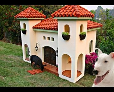 20 Most Luxurious Dog Houses - 20 most luxurious dog houses