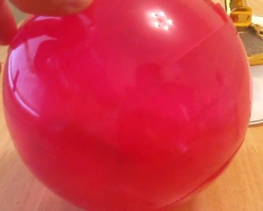 Funny Cute Hamster In Her Ball! - funny cute hamster in her ball