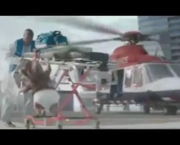 The Turbo Hamster Has Arrived - 2017 Kia Soul TV Commercial, Song by Motörhead - the turbo hamster has arrived 2017 kia soul tv commercial song by motorhead