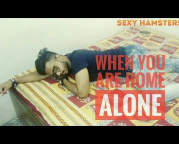 When You Are Home Alone | Funny Vines | Sexy Hamsters - when you are home alone funny vines sexy hamsters