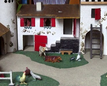 Java the funny pirate Hamster explores a new incredible House Palace a farm! - java the funny pirate hamster explores a new incredible house palace a farm