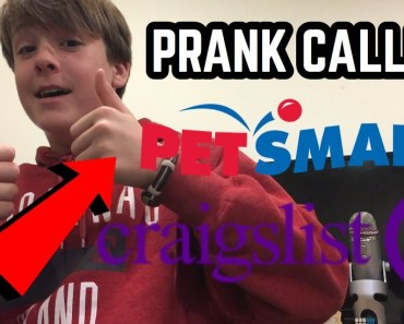 Prank Calling PetSmart and Cragslist Advertisements (MUST WATCH) - prank calling petsmart and cragslist advertisements must watch