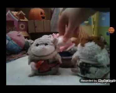 So funny!YTP Hamsters and Potatos reaction! - so funnyytp hamsters and potatos reaction