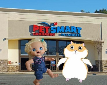 Baby Alive Outing To Pet Store! Molly Buys A Hamster! - hamster cage - baby alive outing to pet store molly buys a hamster hamster cage