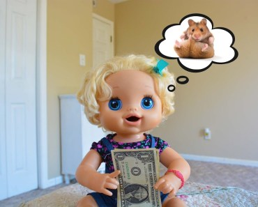 Baby Alive Wants A Hamster! - Baby Alive Videos- Hamster Videos - baby alive wants a hamster baby alive videos hamster videos