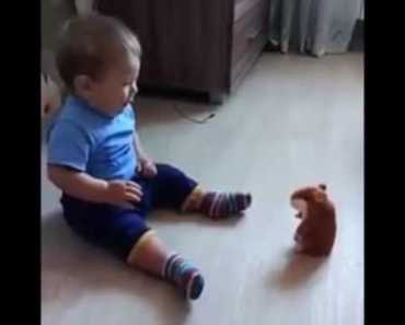 Baby scared of Talking Hamster toy - baby scared of talking hamster toy