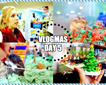 GOING TO PETSMART | HAMSTERS AND KITTENS | Vlogmas - going to petsmart hamsters and kittens vlogmas