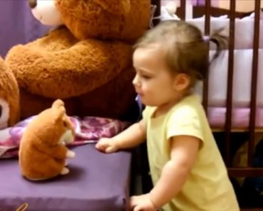 Baby With Funny Talking Hamster - baby with funny talking hamster