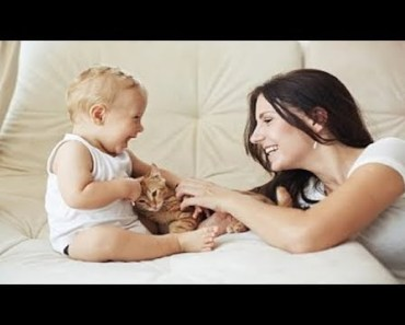 Funny And Cute Cats And Dogs Jealous Of Babies Compilation - funny and cute cats and dogs jealous of babies compilation