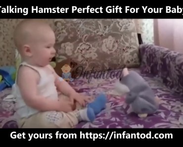 Funny Talking Hamster That Repeats What You Say - Plush Baby Toy - funny talking hamster that repeats what you say plush baby toy