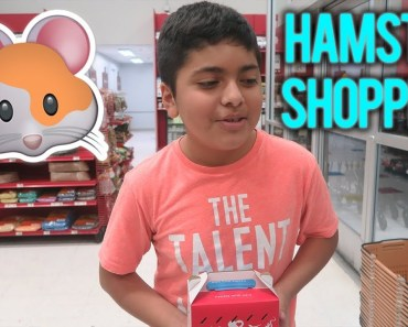 Getting A Hamster For My Brother!! (PETCO SHOPPING SPREE!) - getting a hamster for my brother petco shopping spree