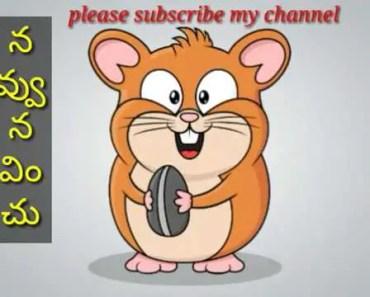 kodaka koteswara rao song Hamster version|Funny video - kodaka koteswara rao song hamster versionfunny video