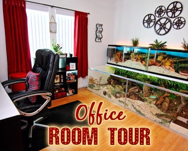 ROOM TOUR! My Hamster Area & Office (Movie Themed) - room tour my hamster area office movie themed