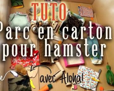 Tuto : parc en carton pour hamster - tuto parc en carton pour hamster
