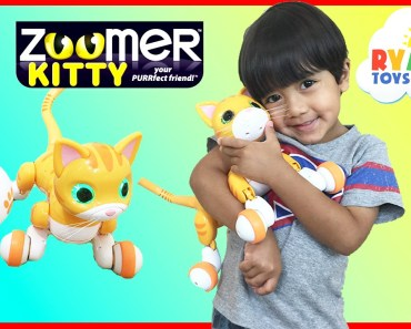 Zoomer Kitty Whiskers The Orange Tabby Unboxing and Play with Ryan ToysReview - zoomer kitty whiskers the orange tabby unboxing and play with ryan toysreview