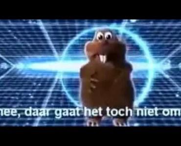 funny hamster - 1519407306 funny hamster